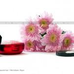 № 5881017: Цветы хризантемы, тени для век и пудра с кисточкой на белом фоне
